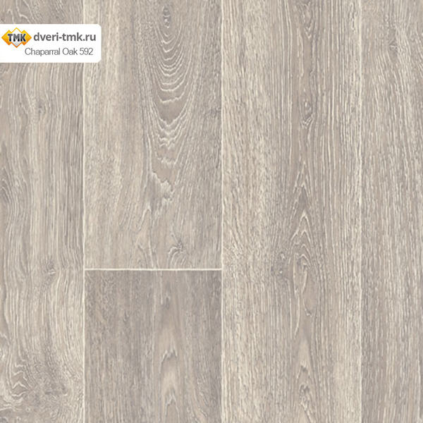 Chaparral Oak 592